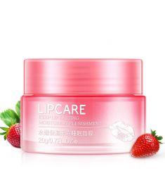 BIOAQUA Lip Care 20 gm